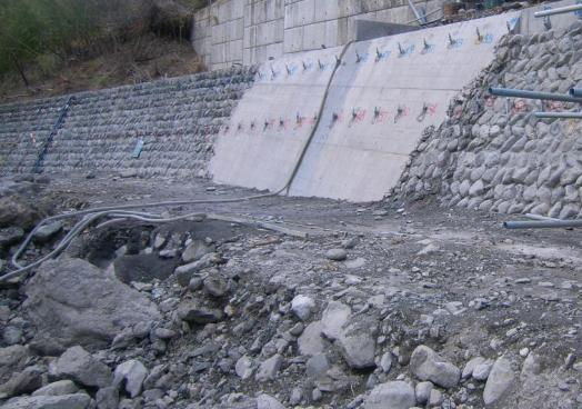 河川護岸強化対策の適用事例/網状鉄筋挿入工(EPルートパイル)